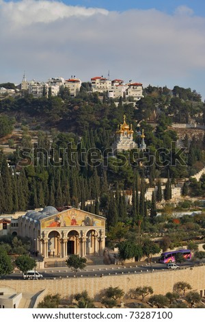 Mount of Olives in Jerusalem. The Church of all peoples, and centuries-old cypress road - stock photo