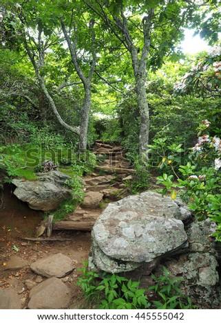 Mount Pisgah Hiking Trial off the Blue Ridge Parkway, North Carolina  - stock photo