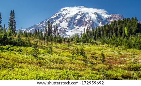 Mount Rainier from the Paradise viewpoint - stock photo
