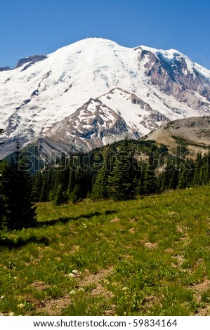 Mount Rainier on a beautiful sunny day behind a grassy wildflower meadow.