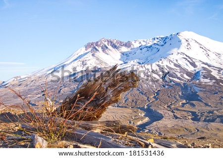 Mount St. Helens 30 years after eruption - stock photo