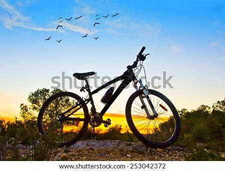 mountain bike at dawn - stock photo