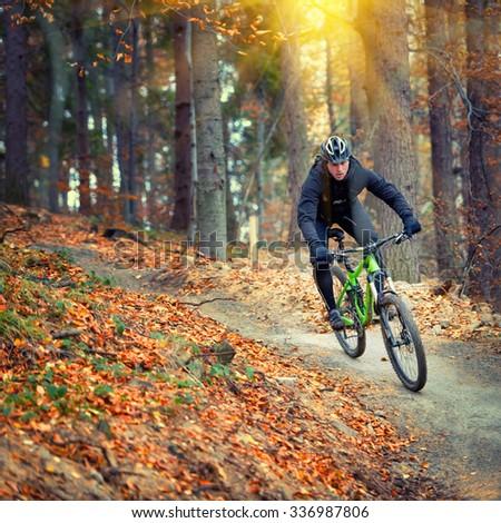 mountain biker riding in autumn forest - stock photo