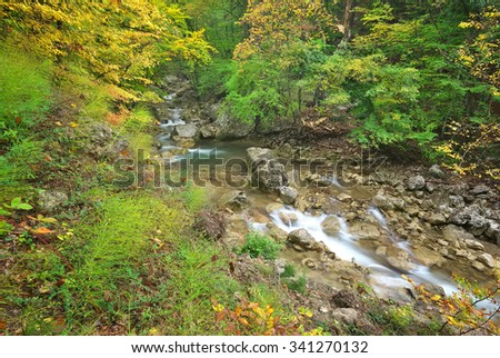 Mountain Creek in autumn forest. Composition of nature - stock photo