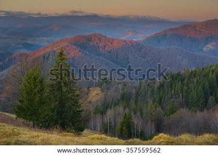 mountain forest slopes of the Carpathians green tree dry grass europe autumn in the mountains