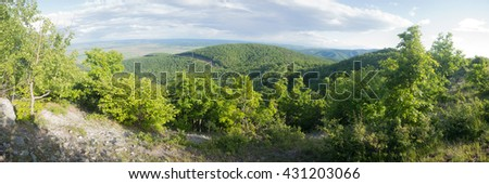 Mountain Forest, Trascau Mountains, Carpathians, Romania