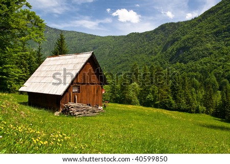 mountain hut on the meadow with yellow flower and green grasses in summer - stock photo