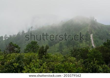 mountain in fog, Chiang Mai, Thailand - stock photo