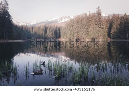 Mountain lake at sunny morning - stock photo