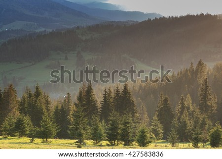 Mountain landscape and meadow illuminated by the sun at sunset - stock photo