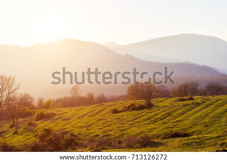 Mountain landscape on a sunny day. The mountains are covered with forest