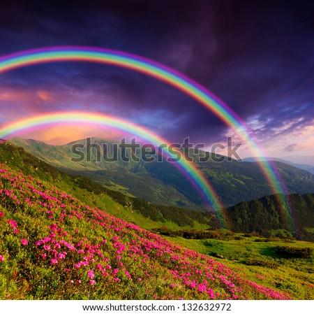 Mountain landscape with a rainbow over flowers - stock photo