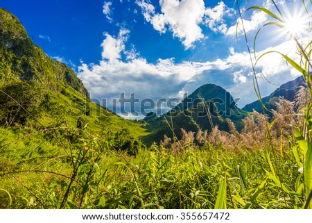 Mountain landscape with green grass field and blue sky - stock photo