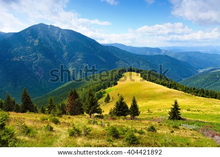 mountain landscape with meadow between trees, blue sky over green hills