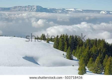Mountain landscape with snow and trees