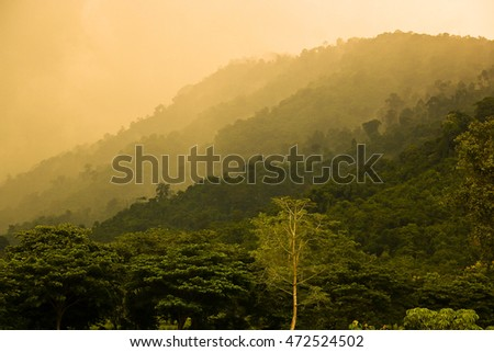 Mountain landscape with the mist in the evening, Thailand
