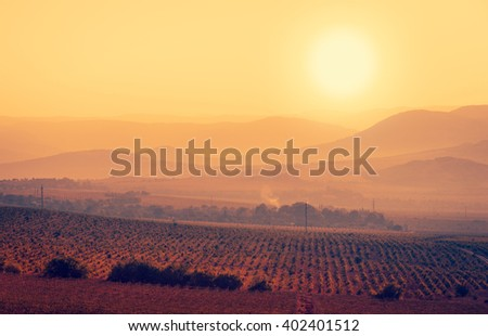Mountain landscape with vineyard. Countryside view, sunrise at the fields and silhouettes of the hills on horizon. Rural landscape with grape valley. Vineyard plantation in the morning. - stock photo