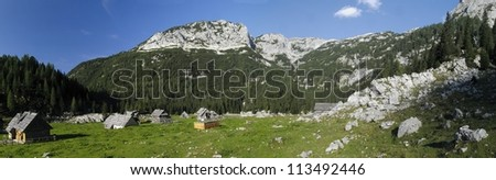 mountain meadow Planina V Lazu in Julian Alps in Slovenia