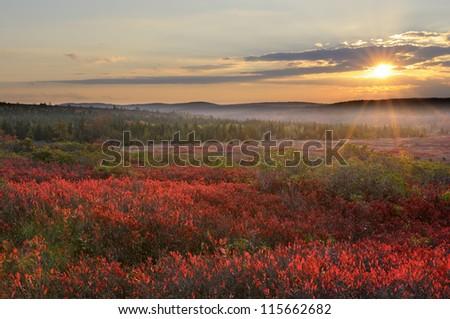 Mountain Meadow Sunset - stock photo