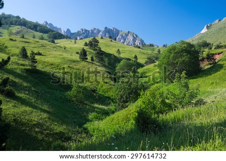 Mountain meadows at Sutjeska National Park - stock photo