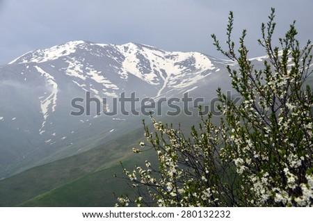 mountain peak maymekh - stock photo