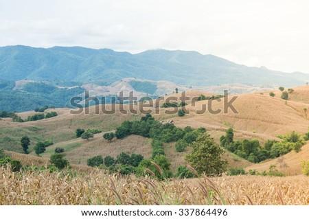 Mountain problum,Environmental degradation - stock photo