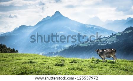 mountain range at the dolomites in austria - stock photo