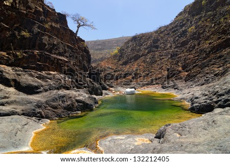 Mountain river amongst rocks on background of the mountains and endemic trees, Socotra, Yemen