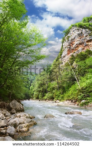 Mountain river flowing at summer forest landscape - stock photo