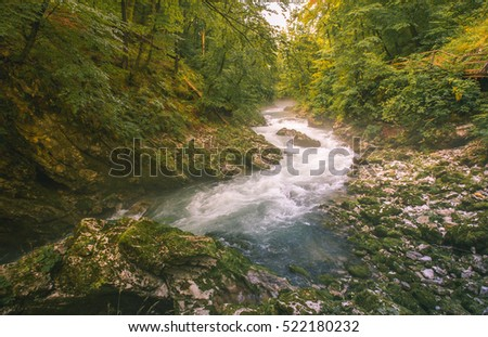 mountain river flowing fast through the gorge, vintgar, bled, slovenia