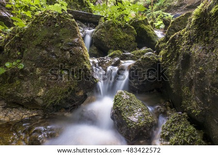 Mountain river flowing through the green forest. Stream in the wood