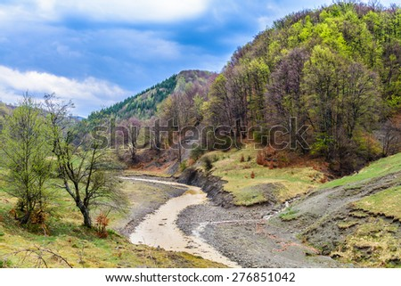 mountain river flowing throw spring nature landscape after the rain - stock photo