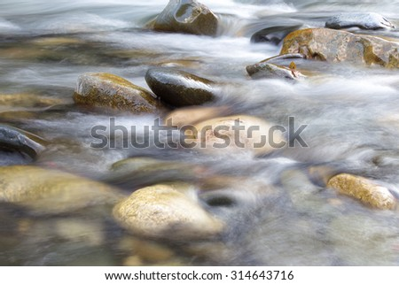 Mountain river in forest