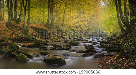 Mountain river in forest, autumn landscape - stock photo