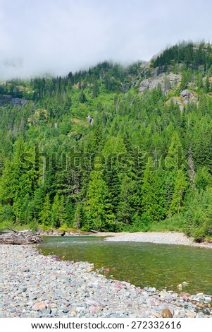 mountain river in Glacier National Park, Montana in summer - stock photo