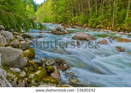Mountain river in Lynn Canyon park at North Vancouver, Canada. - stock photo