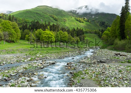 Mountain river in the forest. Abkhazia - stock photo