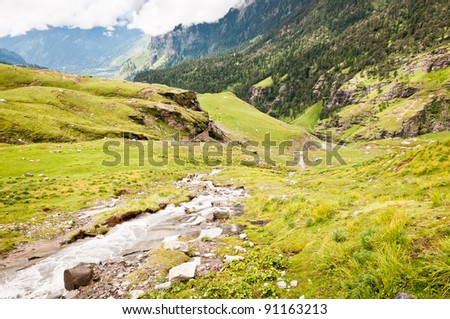Mountain river on slope covered by flowing plants, Himalayas, India - stock photo