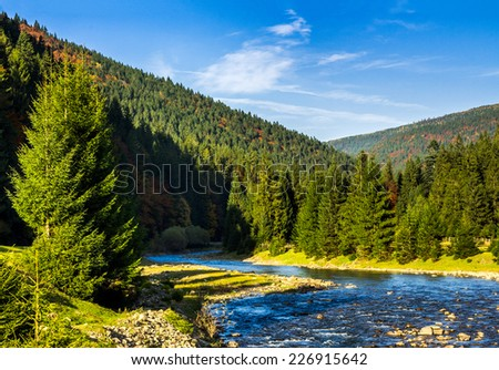 mountain river with stones the forest near the mountain slope - stock photo
