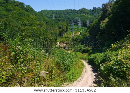 Mountain road in the endless summer forest - stock photo