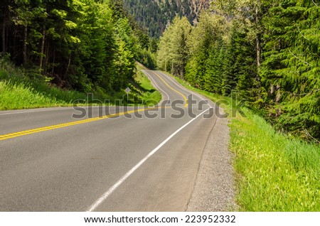 Mountain Road Through a Forest - stock photo