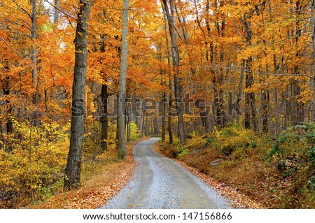 Mountain Road Through Fall Colors - stock photo