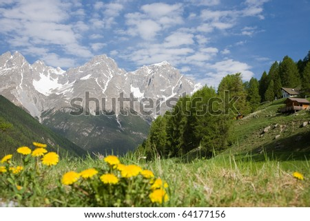Mountain scene with a green lawn, trees and mountain.