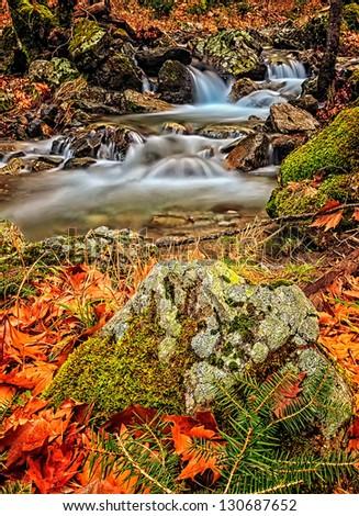 Mountain Stream. - stock photo