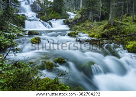 Mountain stream, Adamello Brenta Natural Park, Italy