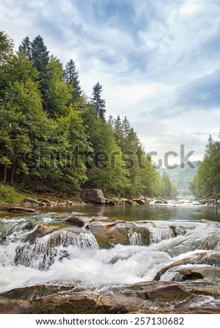 Mountain stream in a  forest. - stock photo