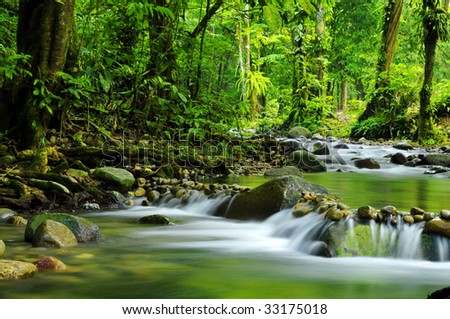 Mountain stream in a forest - stock photo