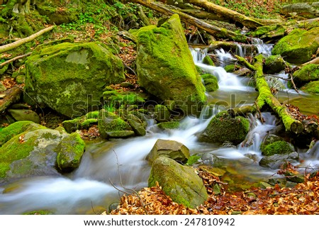 Mountain stream in deep forest - stock photo