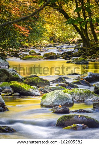 Mountain stream in Great Smoky Mountain National Park with fall colors on display - stock photo