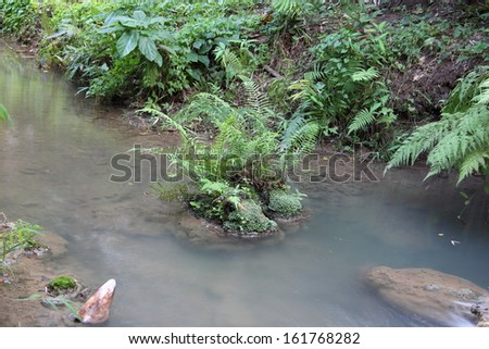 mountain stream in the forest - stock photo